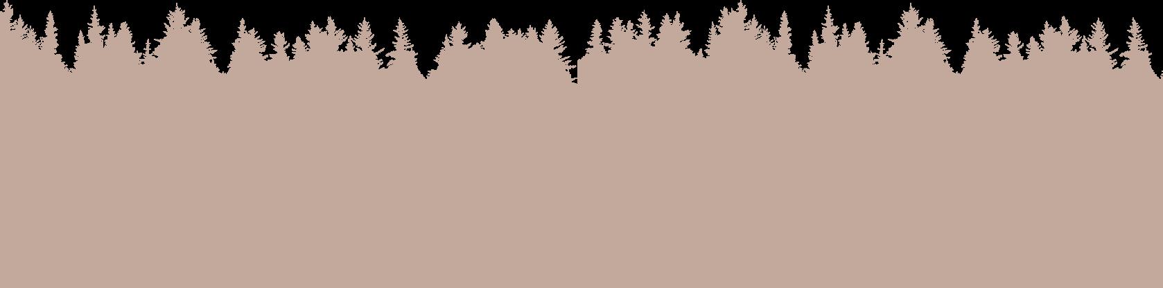 Forêt Atelier La Canopée Boréale